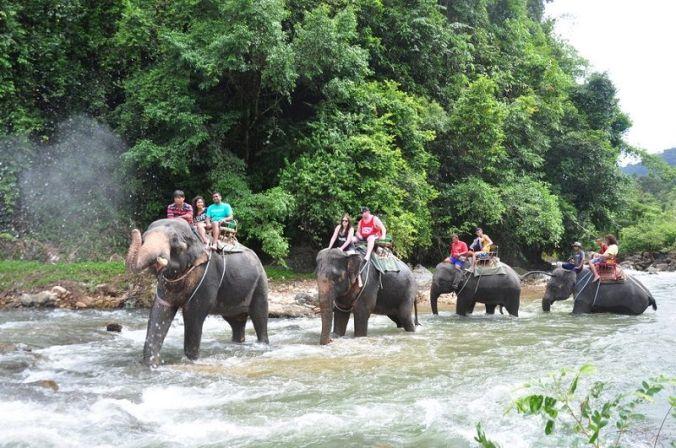 Khao Phra Thaew Royal Wildlife